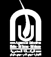 logo-blanc-813-w